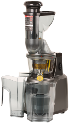 Estrattore di succo Rgv Juice Art Muscle 110781